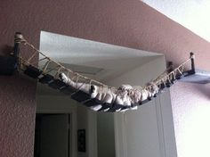 The Indiana Jones Cat Bridge. | 23 Insanely Clever Products Every Cat Owner Will Want