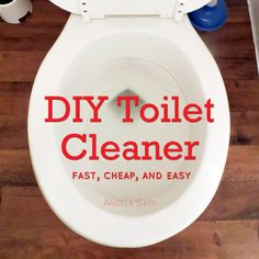 DIY Toilet #Cleaner
