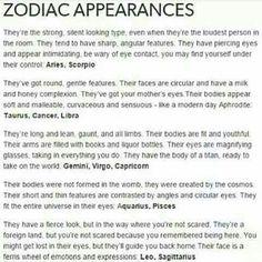My boyfriend is soo like that He's a Leo And I.am pretty much what they say Im a Libra and a Scorpio Le Zodiac, Zodiac Posts, Zodiac Signs Horoscope, Zodiac Memes, Zodiac Star Signs, Zodiac Sign Facts, Zodiac Horoscope, Astrology Signs, Pisces