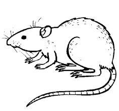 Dessin de rebus bing images jeux et devinettes for Underground animals coloring pages