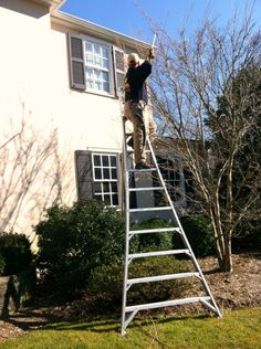 Now is the time to trim your trees. - http://www.plantsolutionsnj.com/now-is-the-time-to-trim-your-trees/