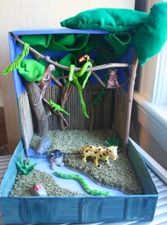 This shows a selection of animals found in the habitat along with it's 4 layers: 1. Emergent Trees 2. Canopy Trees 3. Understory Trees 4. Forest Floor