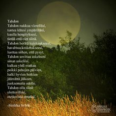 Cool Words, Wise Words, Carpe Diem Quotes, Finnish Words, Stress Control, Life Lyrics, Because I Love You, Think, Love Poems