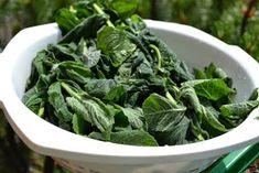 Olivciowe Pasje z Natury: SYROP ZE ŚWIEŻEJ MIĘTY Spinach, Vegetables, Recipes, Food, Meal, Eten, Vegetable Recipes, Recipies, Meals