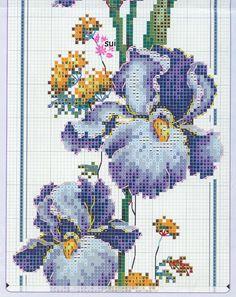sweet perfume iris 6/7