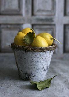 20+ Amazing Still Life Photography Ideas using Lemon