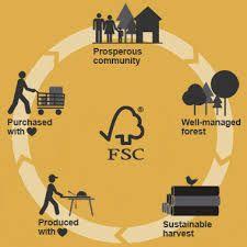 Resultat d'imatges de FSC
