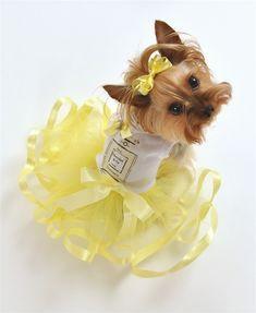 Chewnel No. 5 Paris Parfum Tutu Dress with Rhinestones in Yellow #dogs