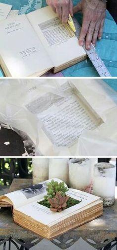 Boek als plantenbak (FB)