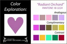 Explore Color: Radiant Orchard - Eva Maria Keiser Designs