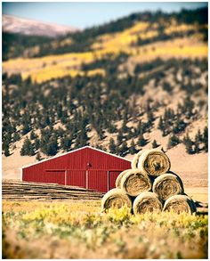 """""""Little Red Barn"""" by Andy & Cindy Serpa of Humboldt Street Photography"""