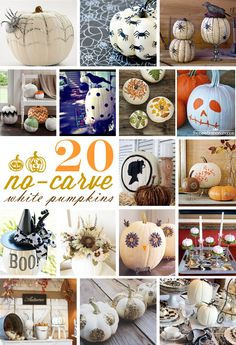 20 no-carve white pumpkins Halloween decorations | curated by TheCelebrationShoppe.com