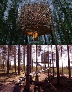 Uppdragsgivare: Treehotel Arbetsgrupp: Arkitekter: Mårten Cyrén (The Cabin), Bertil Harström (The Bird's nest), Sami Rintala (The Dragonfly), Tham & Videgård (The Mirrorcube), Thomas Sandell (The Blue cone)