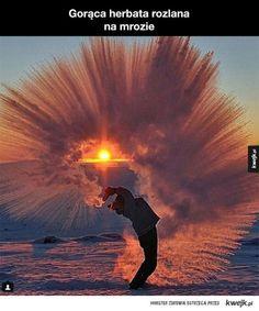 single randkuje wybrzeże słońca