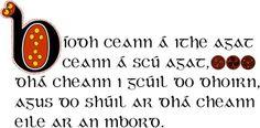 """Bíodh ceann á ithe agat, ceann á scú agat, dhá cheann i gcúil do dhoirn, agus do shúil ar dhá cheann eile ar an mbord. (""""Be eating one, be peeling one, have two in the heel of your fist and your eye on two more on the table."""")  Explanation: http://www.fiosfeasa.com/proverbs.asp?cid=439"""
