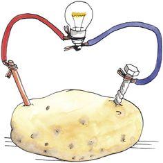 eight muddy feet | Potato powered light bulb | Pinterest | Science ...:eight muddy feet | Potato powered light bulb | Pinterest | Science, Science  projects and Projects,Lighting