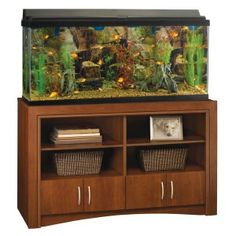 http://www.fishtankstands.net/ | A Fish tank stand for home improvement. - Adding a modern and creative aquarium with an elegant fish tank stand is the perfect way to improve your home. Fish tank stands can be bought at very reasonable prices. Fish tanks have been proven to make a home more relaxing and tranquil.