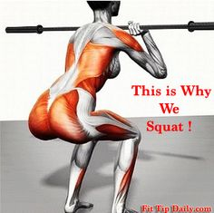 Different Types of Squats - Switch it Up For Amazing Legs