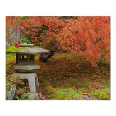 Seattle Japanese Garden, Seattle Washington, Autumn Garden, Tape, Outdoor Decor, Poster, Color, Products, Colour