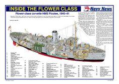 Afbeeldingsresultaat voor battleship cutaways