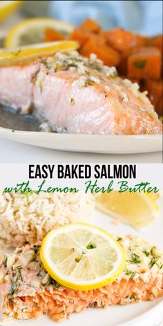 salmon recipes This Baked Salmon recipe is super easy to make and ready in 20 minutes! Seasoned with a simple flavored butter made with garlic, fresh dill and lemon, this baked salmon recipe always turns out flaky, tender and perfectly delicious. Fresh Salmon Recipes, Dill Recipes, Baked Salmon Recipes, Seafood Recipes, Cooking Recipes, Healthy Recipes, Fish Recipes For Diabetics, Sous Vide Salmon Recipes, Seafood