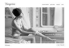 Shopify Website Design eCommerce Web Design Custom Website Design Facebook Storefront