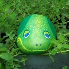 Painted frog rocks are same with another rock painting. It proves that a rock can be turning to something valuable. See many examples of this extraordinary frog painted rocks. Pebble Painting, Pebble Art, Stone Painting, Rock Painting, Painted Garden Rocks, Painted Rocks Kids, Painted Stones, Frog Rock, Pet Rocks