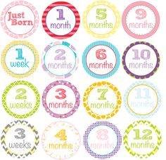 Milestone Onesie Stickers or Iron On Transfers! Get the entire set to track baby's growth from my etsy shop