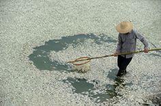 Um alerta de desespero sobre a crise ambiental na China | #água, #ContaminaçãoDoSolo, #CriseAmbiental, #Fiscalização, #LuChen, #MeioAmbiente, #Poluição, #Rios