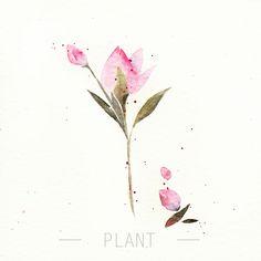 阿昕_水彩-花——涂鸦王国@ˇDanta采集到植物绘集「水彩」(1804图)_花瓣插画/漫画