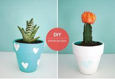 Plantenpotten versieren is erg leuk om samen met je kinderen te doen. En een…