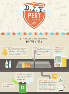 Summer is the time when pests find their way into your home. Keep these ideas in mind to keep your home bug-free.