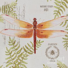 I uploaded new artwork to plout-gallery.artistwebsites.com! - 'Botanical Dragonfly-jp3419' - http://plout-gallery.artistwebsites.com/featured/botanical-dragonfly-jp3419-jean-plout.html