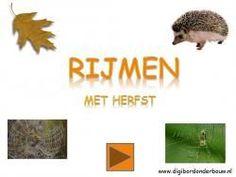 Digibordles: Rijmen met herfst De rijmwoorden zijn: egel - tegel, blad - kat, bos - vos, web - step, spin - kin, slak - tak, regen - negen, uil - vuil, kastanje - oranje, laarzen - kaarzen, zwijn - wijn, tak - slak, plas - jas, boom - slagroom. http://digibordonderbouw.nl/index.php/themas/herfst/herfstalgemeen/viewcategory/170