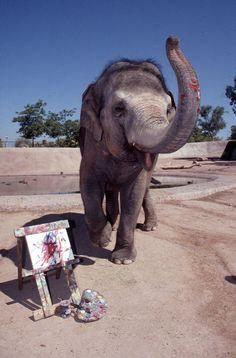 1000+ images about Elephants o...