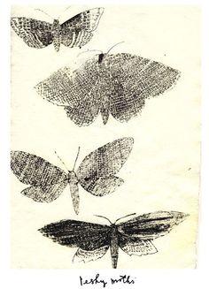 charlotte lucie farmer illustration: mostly moths Illustrations, Illustration Art, Birds And The Bees, Collage, Mystique, Art Sketchbook, Art Lessons, Printmaking, Moth