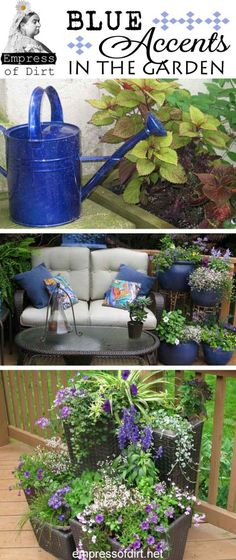 I want that blue watering can!
