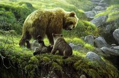 Robert Bateman Grizzly Bear and Cubs Bear Paintings, Wildlife Paintings, Wildlife Art, Original Paintings, Watercolor Paintings, Print Artist, Artist Painting, Bear Art, Batman