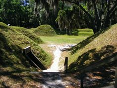 Fort McAllister - Google Search