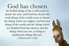 I Corinthians 1:27.  God has chosen the simple things...