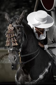 Al son de la garrocha by David Loti / All About Horses, Hacienda Style, Andalusian Horse, Black Horses, Friesian, Horse Photography, Horse Breeds, Equestrian Style, Horse Tack