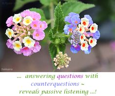 ...  answering #questions with #counterquestions ~ reveals passive listening ...!
