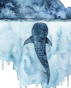 """Watercolor Whale Shark Painting - Print titled, """"Stars Collide"""" Whale Shark Painting, Shark, Whale Art, Whale Print, Beach Decor, Stars by TheColorfulCatStudio on Etsy https://www.etsy.com/nz/listing/503587841/watercolor-whale-shark-painting-print"""