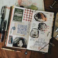 #journalideas #midoritravelersnotebook Notebooks, Journals, My Journal, Travelers Notebook, Guinea Pigs, Boys, Instagram, Art, Baby Boys