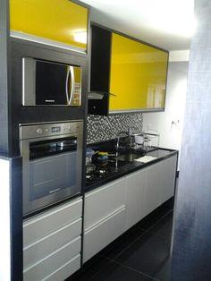 O forno elétrico e o microondas embutidos (temos uma área para um armário embutido que ficaria interessante). Gostaríamos de incluir uma lava loucas na cozinha.... no local que fosse mais conveniente.
