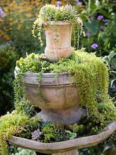 Repurposing materials in the garden is a great way to add budget-friendly accents to a cottage landscape. Think beyond a container's initial purpose and see what it can be used for. If a water fountain no longer retains water, fill it with soil for a cascading display of succulents, sedums, and other plants.