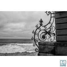 ⚓️Rhode Island⚓️  Pic of the day 09.26.15  Photographer @tyler_seamans  Congratulations! ✨ Cliff Walk  #scenesofRI #newportRI #cliffwalk #newportcliffwalk  #canonusa #canonphotography #teamcanon #bnw #bnw_captures #igersrhodeisland #ig_great_pics #401 #rhodeisland #oceanstate #newengland