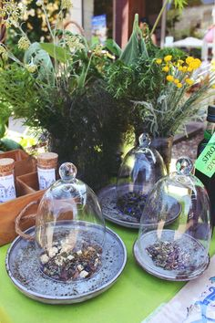 Herbalist Workshop for Garden Week-end at Rivau Castle ! Loire Valley