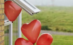 Man Arrested for Releasing Heart-Shaped Balloons in Romantic Gesture