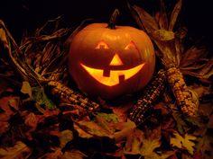 bing halloween wallpaper | Exquisite Halloween Wallpapers | Wallpapers High Definition Wallpapers ...